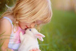 Er kæledyr på børneværelset en god løsning?